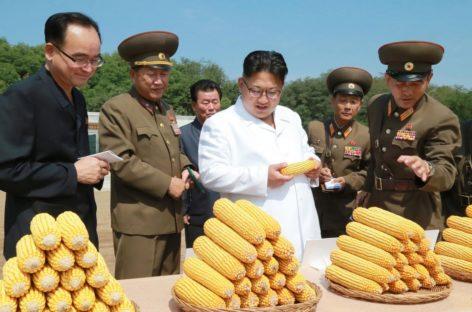 North Korea Displays New ICBM, Other Missiles